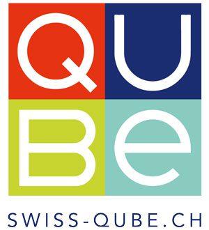 QUBE Infoabend mit Vortrag